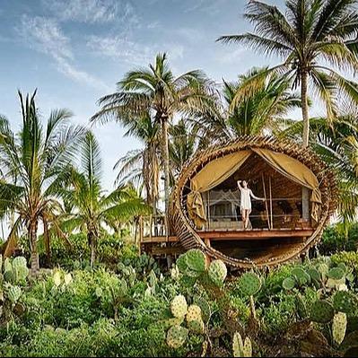 Clarissa Mae Mexico Retreat Feb 22 at Playa Viva Link Thumbnail | Linktree