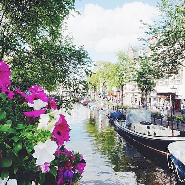 Emiko Nakamura Facebook スペインとオランダの街角から Link Thumbnail   Linktree