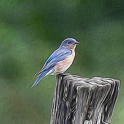 twitter dialog bot (dialogbot) Profile Image | Linktree