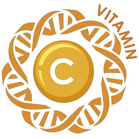 長弓生化科技 精準營養入門方案:維他命C代謝基因檢測 Link Thumbnail | Linktree