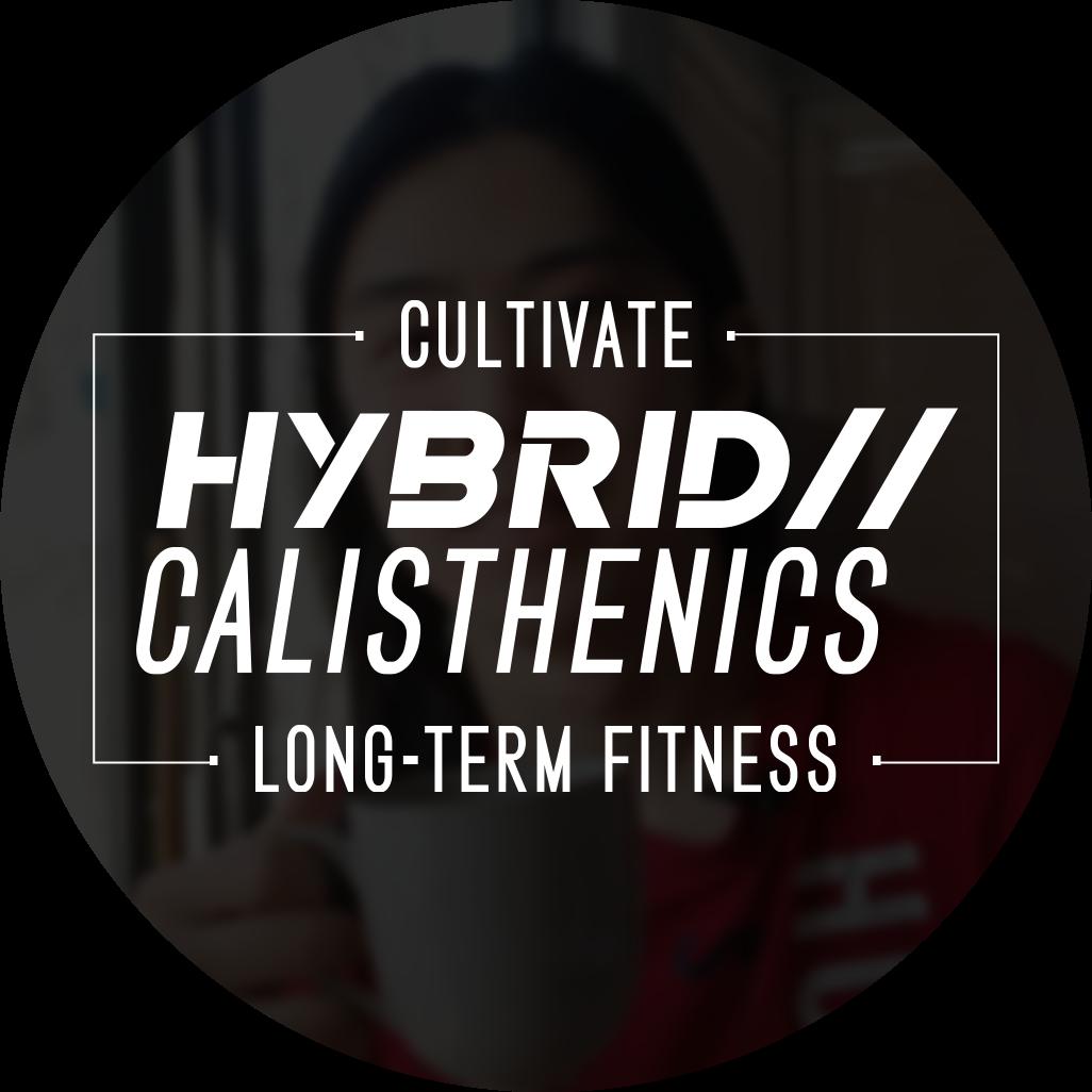 @HybridCalisthenics Profile Image   Linktree