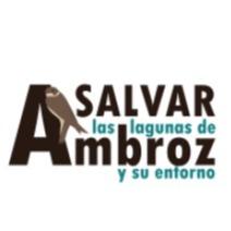 @salvarlagunasambroz Profile Image   Linktree