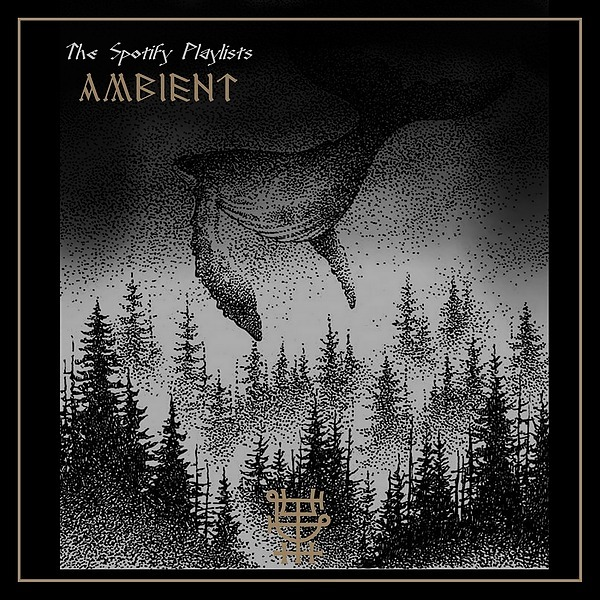 @TheSoundCamp   AMBIENT   The Spotify Playlist Link Thumbnail   Linktree