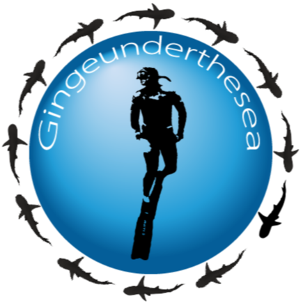 @undertheseaart Gingeunderthesea Facebook Page Link Thumbnail | Linktree