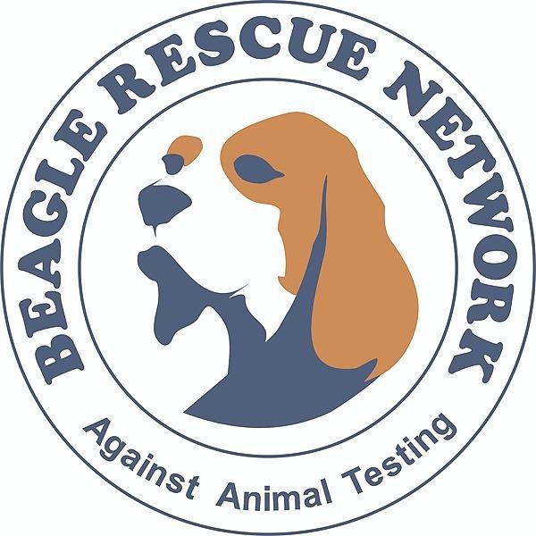 전국 시군 유기동물보호소 1차 실태조사 보고서 다운로드