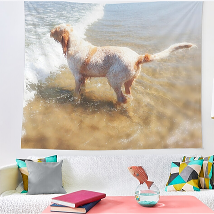 Spinone Wall Tapestries