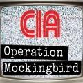 TRUTHPARADIGM.TV | CONDUITS #PROJECTMOCKINGBIRD #MKULTRA Link Thumbnail | Linktree