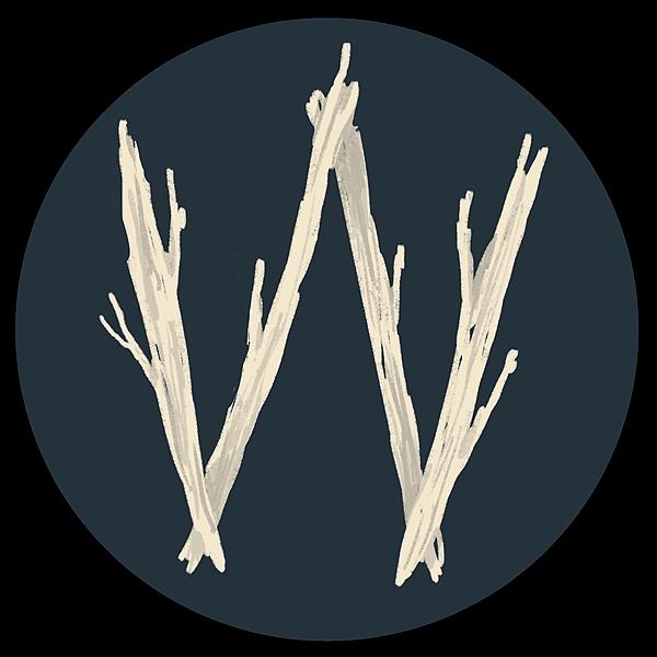 @witchesplanner Profile Image | Linktree