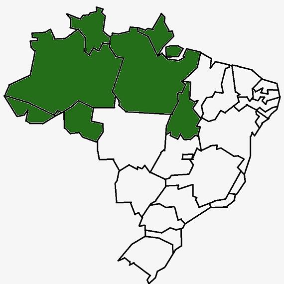 @leipaulogustavo Região Norte Link Thumbnail | Linktree