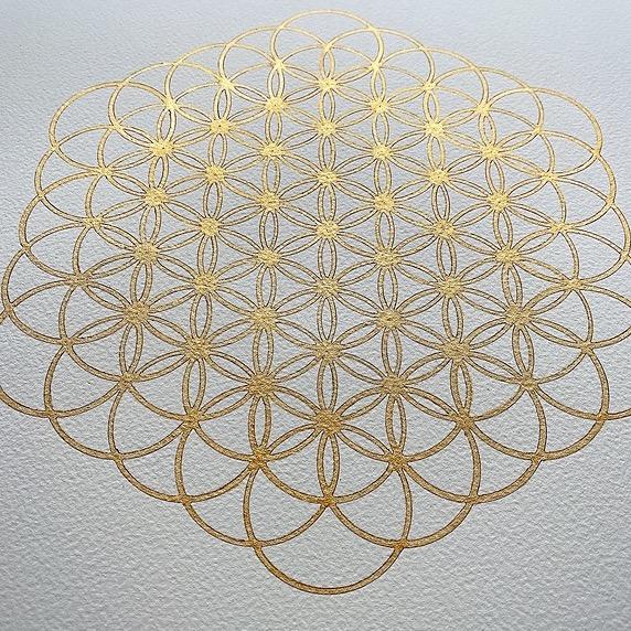 @lotusarttaipei YouTube/神聖幾何学の動画 Link Thumbnail   Linktree