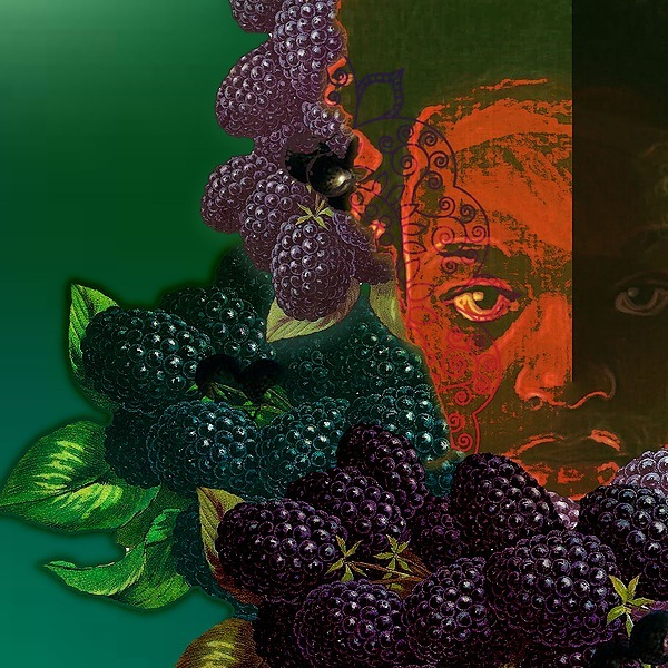 """Mantra Lotus Read Mantra's """"Dark Berries From A Southern Tree"""", Free episodes on Kindle Vella Link Thumbnail   Linktree"""