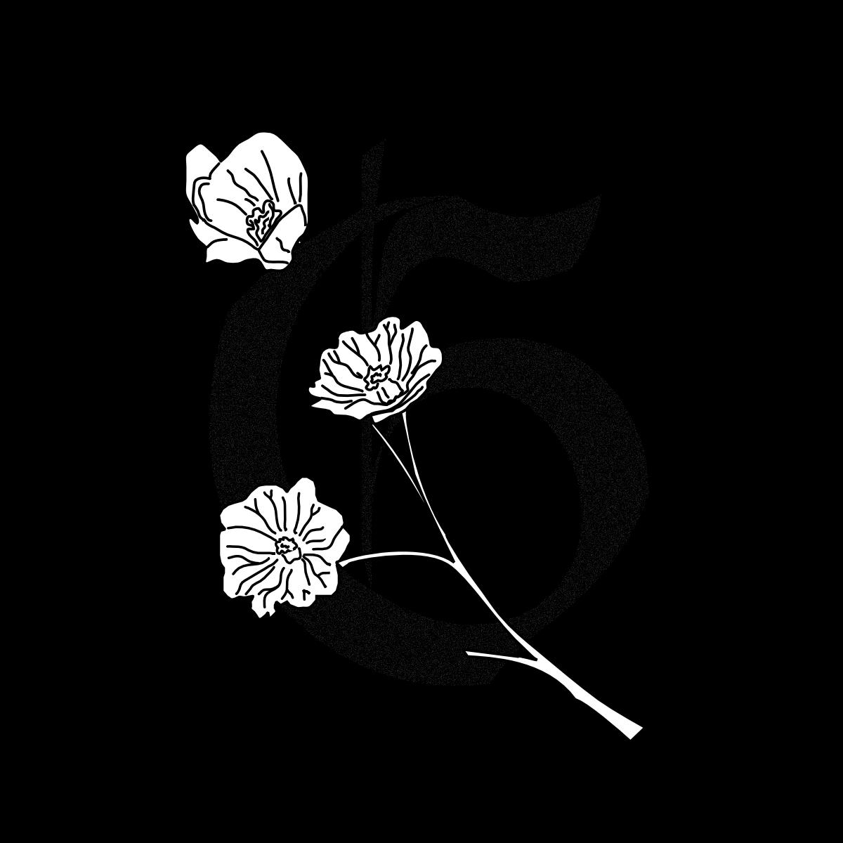 @Galmus Profile Image   Linktree