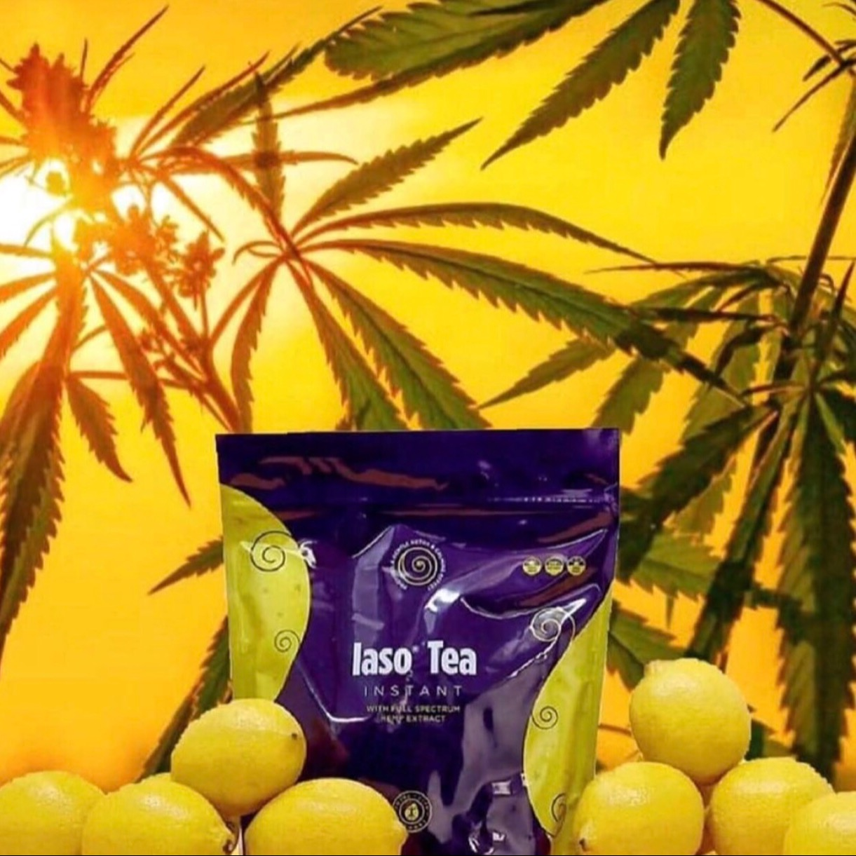 CBD TEA (Hemp Extract)