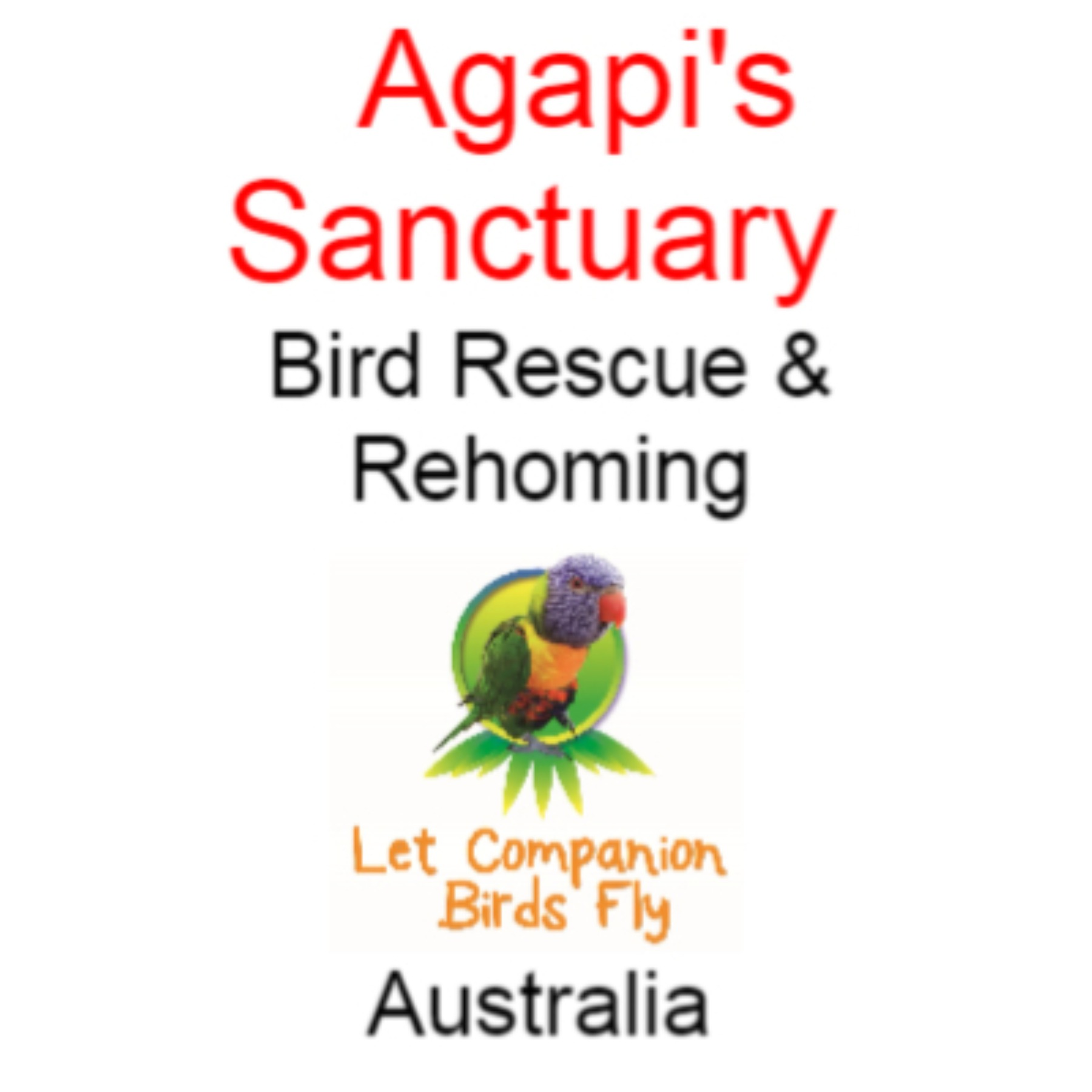 Welcome to my Links! Agapi's Sanctuary Bird Rescue, Adoption, Resort Link Thumbnail   Linktree
