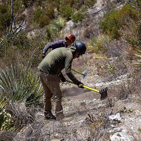 Lowelifes RCC Donate to support trail work Link Thumbnail   Linktree