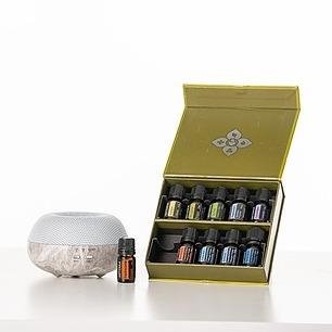 @sofia_ferrari 🇺🇸 Healthy Start Kit USA Link Thumbnail | Linktree