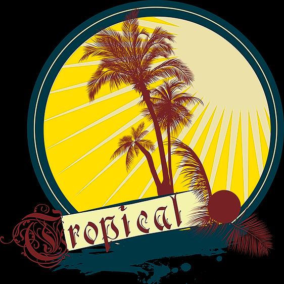 @floridadelfin Merch Store Link Thumbnail | Linktree