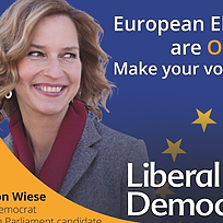 European Election campaign launch speech