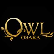@owlosaka Profile Image | Linktree