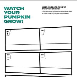 @Amazelab Watch your pumpkin grow work sheet  Link Thumbnail | Linktree