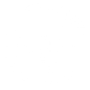 @taylorraemusic Moe's Alley Album Release Party Tickets Link Thumbnail | Linktree