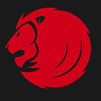 Lionizer CF (lionizer_CF) Profile Image   Linktree