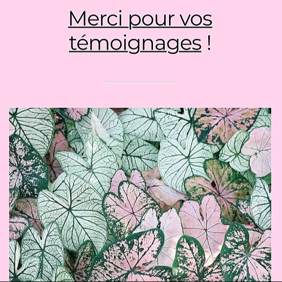 @delphineseguragautier Mon article sur therapeutesmagazine.com Link Thumbnail | Linktree