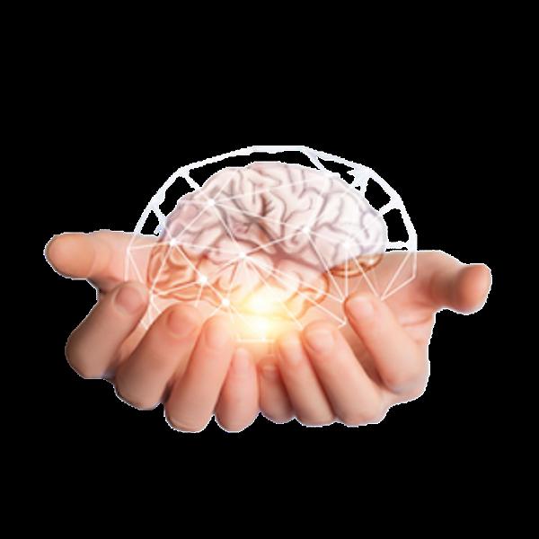 Loving Your Brain - Loving Your Child's Brain