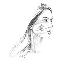 @lesmotsduliban Profile Image   Linktree