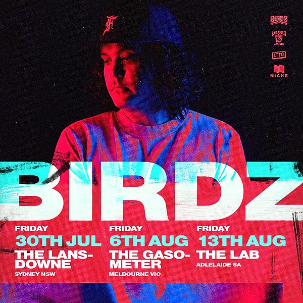 Birdz (misterbirdz) Profile Image | Linktree