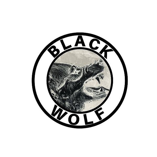 @yaboyblackwolf Profile Image | Linktree
