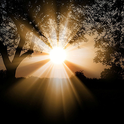 @nataliemspeakman My Rebirth-day  Link Thumbnail   Linktree