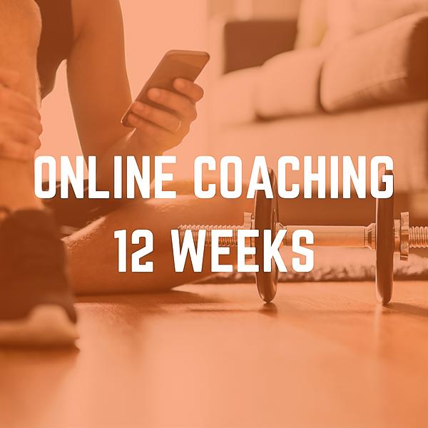 @fitnessteamipswich Online Coaching - 12 Weeks Link Thumbnail | Linktree