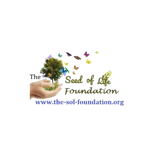The Seed of Life Foundation Personalized Gift Cards | The Seed of Life Foundation  Link Thumbnail | Linktree