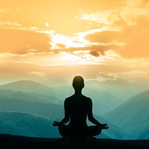 @Westhouston 1:1 Trauma Yoga  Link Thumbnail | Linktree