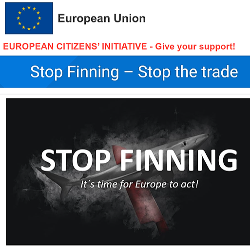 @undertheseaart Stop Finning EU Petition Link Thumbnail | Linktree