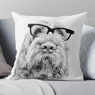 Spinone Pillows