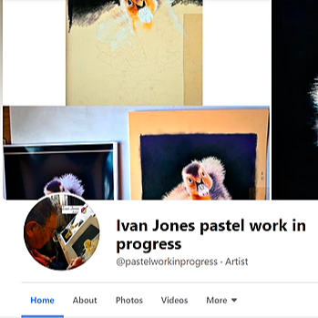 Pastel artwork creation on FB