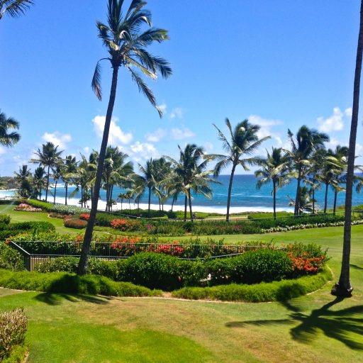 @themilesgenie World of Hyatt in Hawaii Link Thumbnail | Linktree