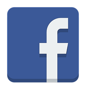Four Lions Facebook