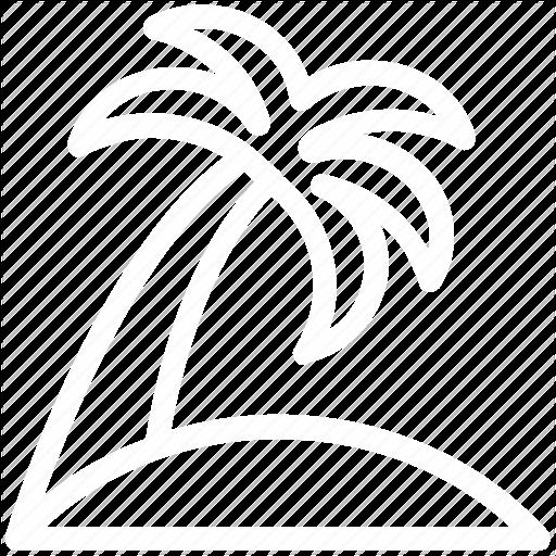 Pacific Paradise Entertainment (Polynesian dancers)