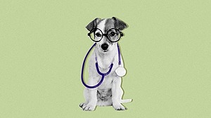 The Atlantic How Your Dog Knows When You're Sick Link Thumbnail | Linktree