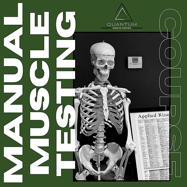 @quantummuscletesting Learn The Manual Muscle Testing Basics ONLINE!! Link Thumbnail | Linktree