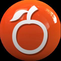 @nordestao Profile Image | Linktree