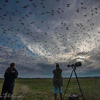 @PaulGoldsteinPhotoSafaris Norfolk Photography Weekend Workshops 2021  Link Thumbnail   Linktree