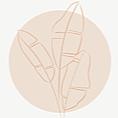 @jayamagalhaes Profile Image   Linktree