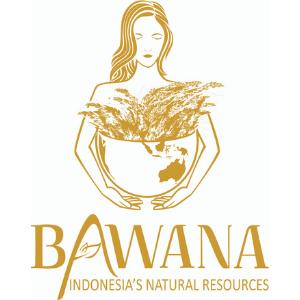@bawanindo Profile Image   Linktree