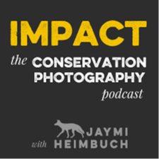 Melyssa St. Michael I took a big, scary step and opened up to @JaymiHeimbuch about the event that (almost) killed my photography career, and how I'm determinedly working my way back.  Link Thumbnail | Linktree