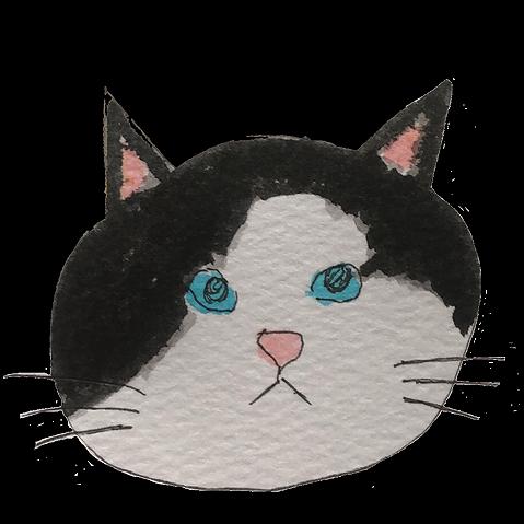 猫のいろいろ雑貨店  (erimaki) Profile Image   Linktree