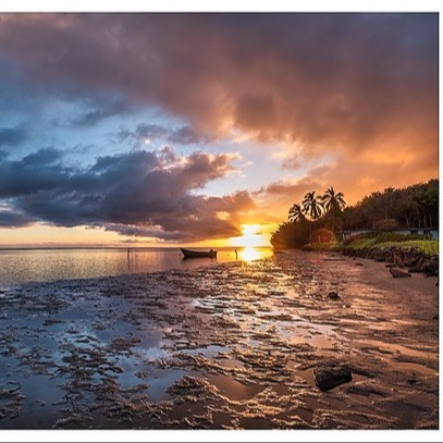 @barclayphoto TOPAZ SOFTWARE - Use the code BARCLAYPHOTO to save 15%. Link Thumbnail | Linktree